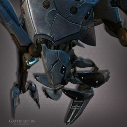 Gatherer 06