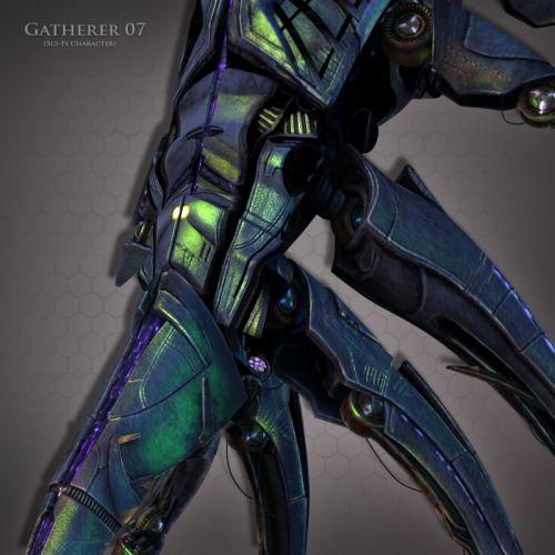 Gatherer 07