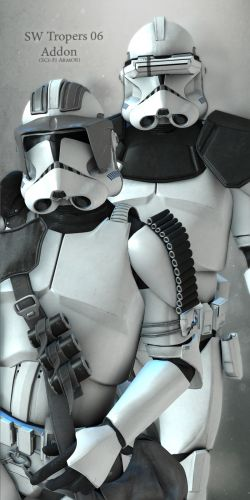 SW Troopers 06 Addon