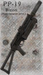 PP-19