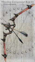 Wooden Compound Bow 01