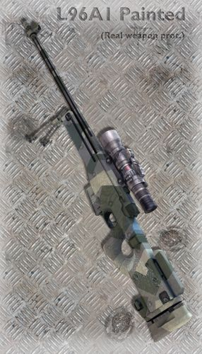 L96A1 Painted