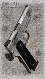 SW 1911