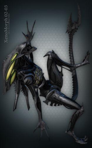 XenoMorph 02 Bundle 01