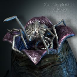 XenoMorph 02-00 FaceHugger