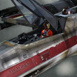 SW WingX