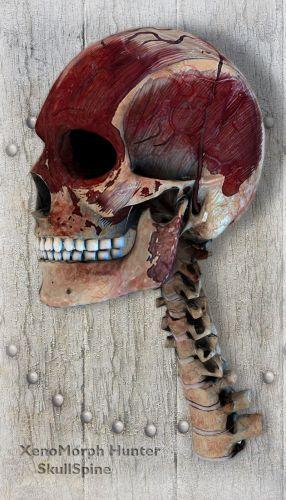 XenoMorph Hunter SkullSpine